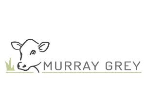 Logo_MurrayGrey_long_low